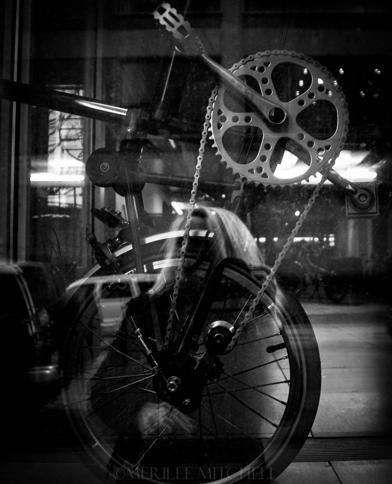 Bicycle. Copyright Merilee Mitchell