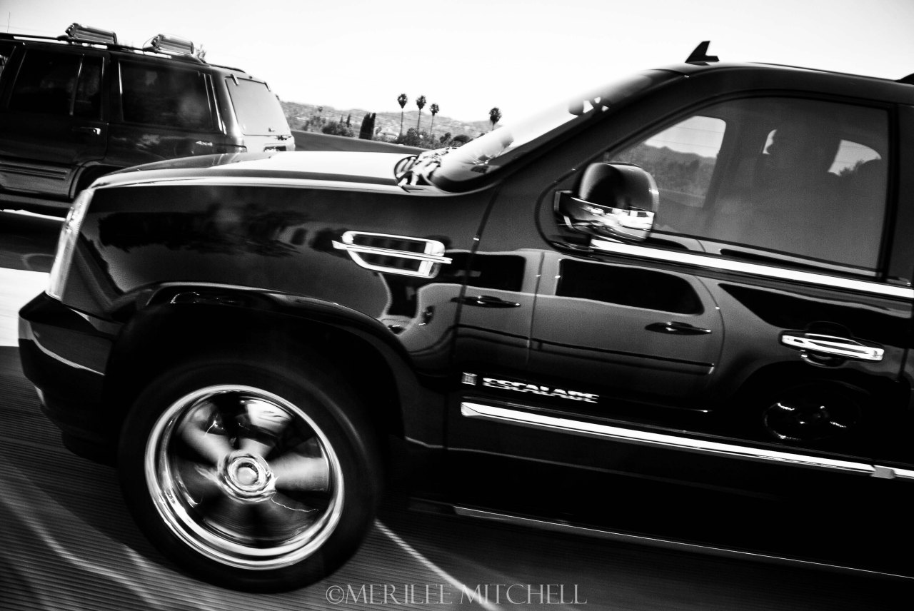 Escalade. Copyright Merilee Mitchell
