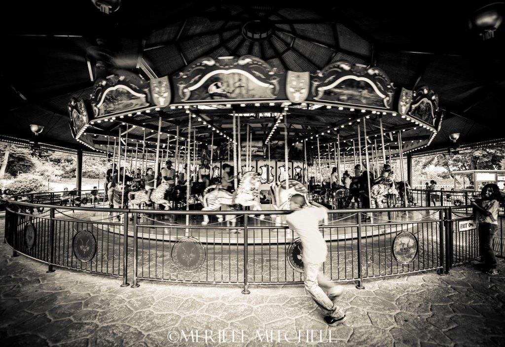 Carousel 2.. Copyright Merilee Mitchell