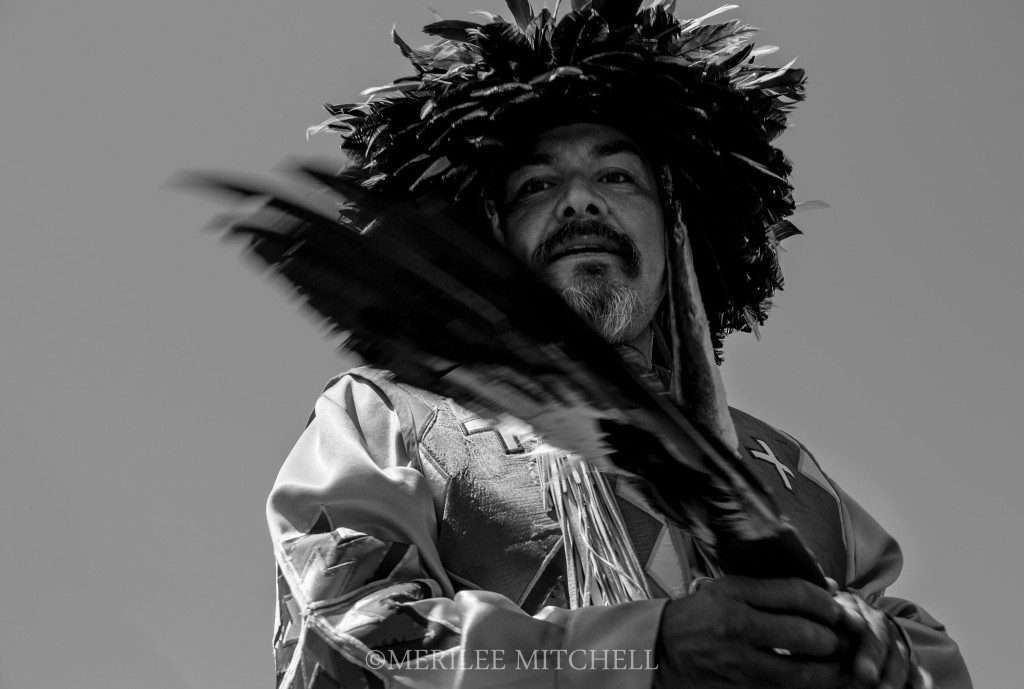 Feathers. Copyright Merilee Mitchell