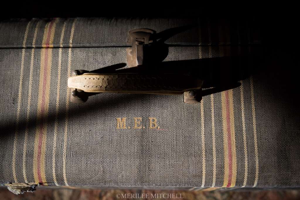 Suitcase. Copyright Merilee Mitchell