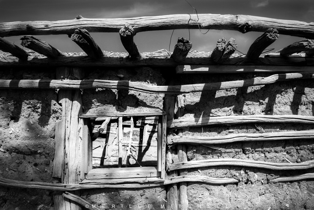 Mud And Sticks. Copyright Merilee Mitchell