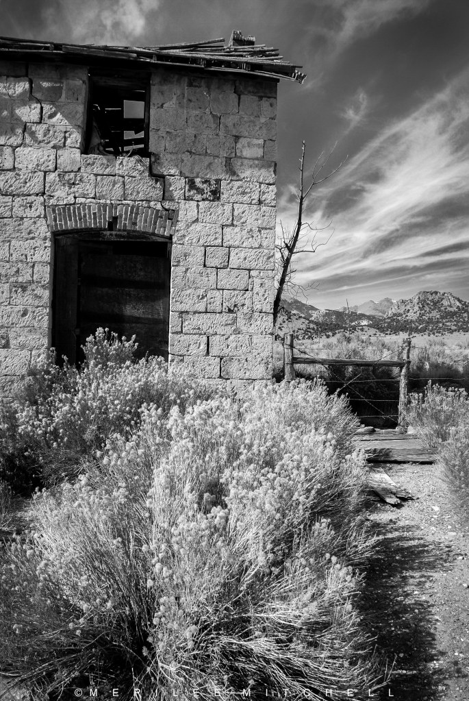 The Ranch House 3. Copyright Merilee Mitchell