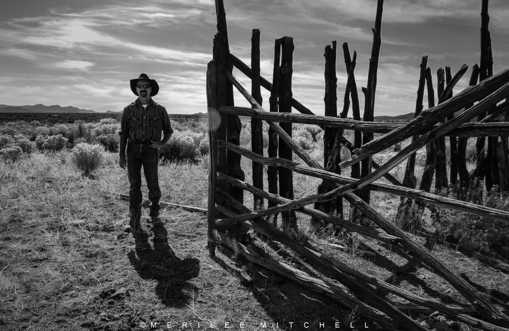 Tree Fence With Cowboy. Copyright Merilee Mitchell