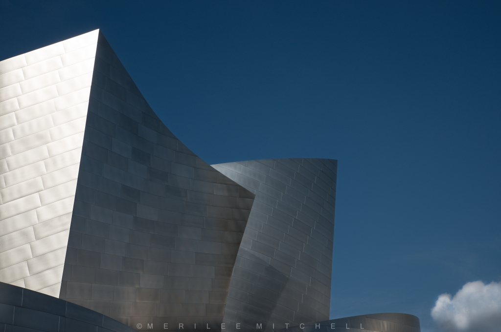 Disney Concert Hall 3. Copyright Merilee Mitchell-4