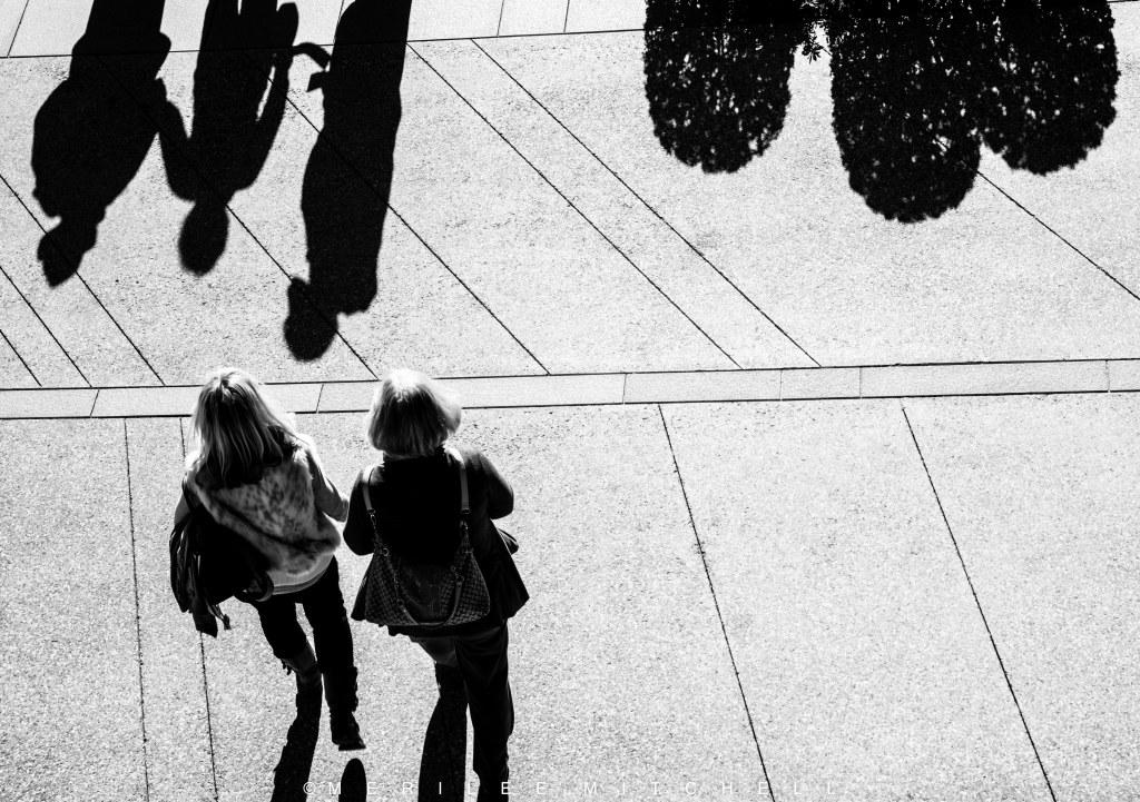 Shadows. Copyright Merilee Mitchell