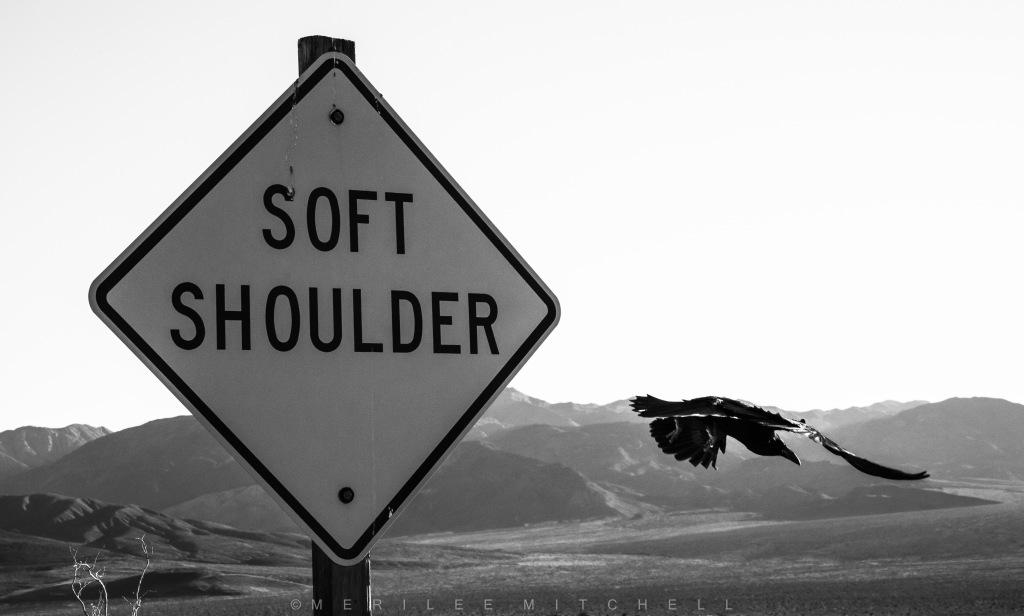 Soft Shoulder. Copyright Merilee Mitchell
