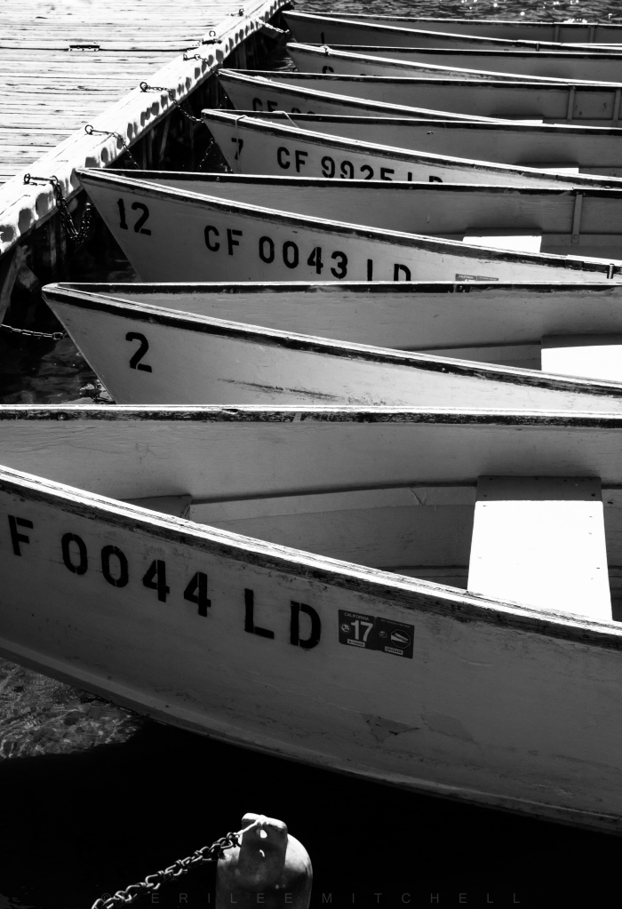 Fishing Boats. Copyright Merilee Mitchell-6