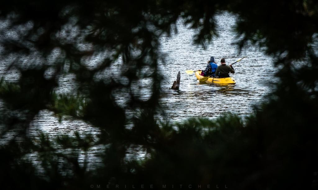 Kayak. Copyright Merilee Mitchell-2