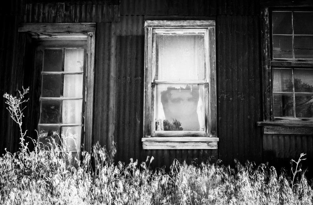 haunted-view-copyright-merilee-mitchell-4