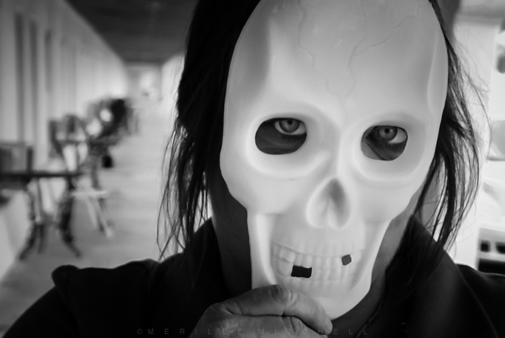 skull-copyright-merilee-mitchell